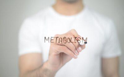 Medical Myth: 'My Slow Metabolism Makes Me Fat'