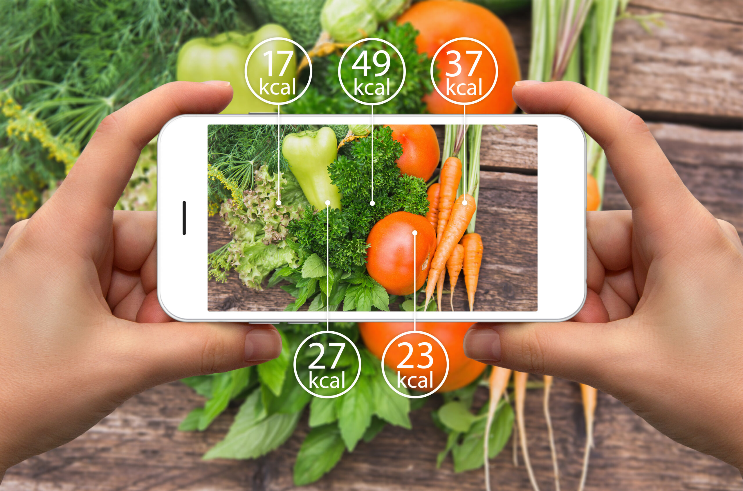 app counting calories of healthy meal
