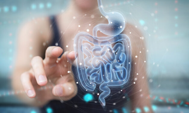 What Does It Mean to Have a Healthy Gut?