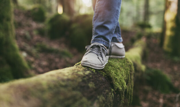 The (Stress Busting, Mood Lifting, Immune Boosting) Power of Walking in Nature
